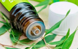 Масло чайного дерева — состав, полезные свойства, применение в косметологии