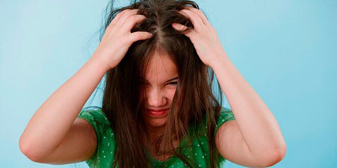 Признаки педикулеза у ребенка